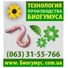 Продам технологию производства биогумуса в Харькове.   Эко-Бизнес