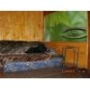 Сдам для отдыха уютную дачу в Святогорске