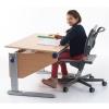 Детское компьютерное кресло moll Scooter 15