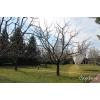 Обрезка плодовых и декоративных деревьев.  Обрезка сада Киев и область