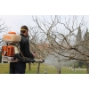 Опрыскивание деревьев от болезней и вредителей.  Обработка сада